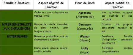 Fleurs de Bach : hypersensibilité aux influences extérieures