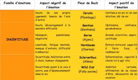 Fleurs de Bach : incertitude